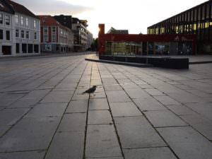Bergen without tourists